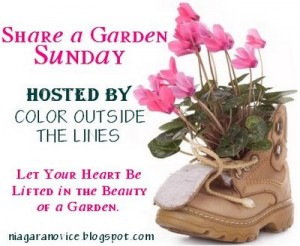 share a garden Sunday